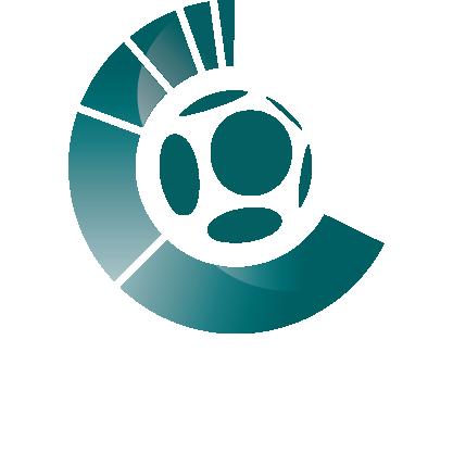 logo FootoVision