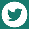 link icon Twitter FootoVision